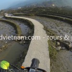 Sapa rice field track by motorbike.
